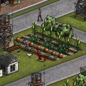 農場の画像